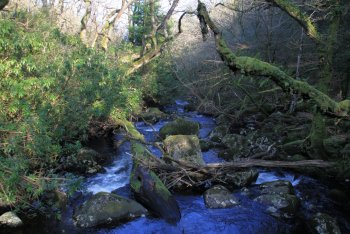 Scorhill Gorge, Chagford, Dartmoor National Park