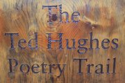Stover Country Park The Ted Hughes Poetry Trail, Bovey Tracey, Dartmoor National Park