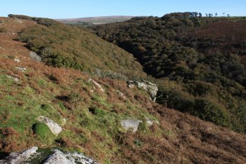 Plym Valley (National Trust), Shaugh Prior, Dartmoor National Park