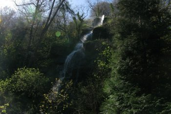 Canonteign Falls Waterfalls, Bovey Tracey, Dartmoor National Park