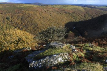 Holne, Dartmoor National Park