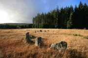 Fernworthy Stone Circle, Chagford, Dartmoor National Park