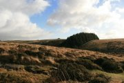 Scorhill Down, Chagford, Dartmoor National Park