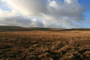 Gidleigh Common, Chagford, Dartmoor National Park