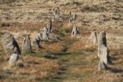 Hurston Ridge/Chagford Common Stone Row, Chagford, Dartmoor National Park