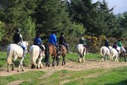 Babeny Farm Riding Stables, Dartmeet, Dartmoor National Park