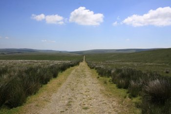 Conchies Road, Princetown, Dartmoor National Park