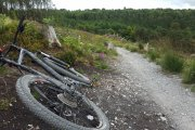 Forest Cycle Hire/Haldon Forest Park Cycle Hire, Dartmoor, Dartmoor National Park