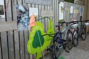 Tamar Trails Cycle Hire, Tavistock, Dartmoor National Park