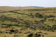 Swincombe, Hexworthy, Dartmoor National Park