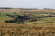 Down Ridge, Hexworthy, Dartmoor National Park