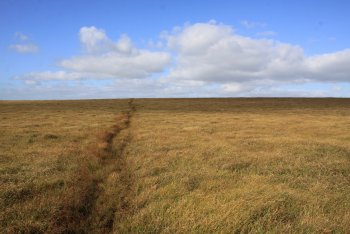 Naker's Hill, Princetown, Dartmoor National Park