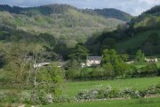 Wray Valley, Moretonhampstead, Dartmoor National Park
