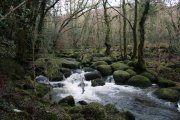 River Bovey, Dartmoor, Dartmoor National Park
