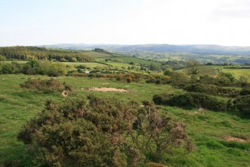 Butterdon Down, Moretonhampstead, Dartmoor National Park