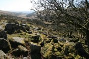 Wistman's Wood Circular Walk, Two Bridges, Dartmoor National Park