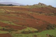 Houndtor Down, Manaton, Dartmoor National Park