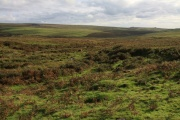 Ditsworthy Warren, Sheepstor, Dartmoor National Park