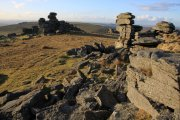 Great Staple Tor, Tavistock, Dartmoor National Park