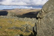 White Tor, Peter Tavy, Dartmoor National Park