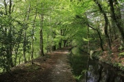 Best Tavistock Walks, Tavistock, Dartmoor National Park
