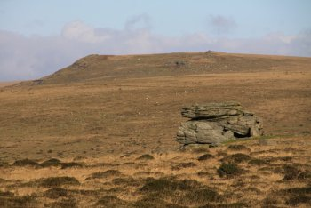 Sharp Tor (South Dartmoor), Harford, Dartmoor National Park