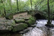 Lustleigh Cleave River Bovey Circular Walk, Manaton, Dartmoor National Park