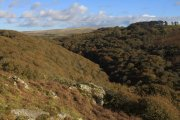 Dewerstone Valley, Shaugh Prior, Dartmoor National Park