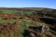 Wigford Down, Shaugh Prior, Dartmoor National Park