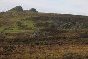 Haytor Down, Haytor Vale, Dartmoor National Park