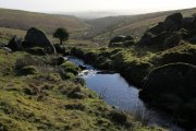Hawns and Dendles Gorge, Cornwood, Dartmoor National Park