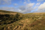 Yealm Head, Cornwood, Dartmoor National Park