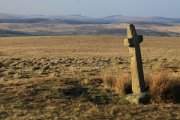 Ter Hill Cross (East), Hexworthy, Dartmoor National Park