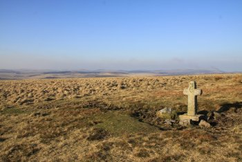 Ter Hill, Hexworthy, Dartmoor National Park