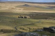 Hen Tor, Sheepstor, Dartmoor National Park