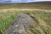 Ted Hughes Memorial Stone, Belstone, Dartmoor National Park